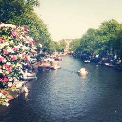 Sunny canals in Amsterdam.