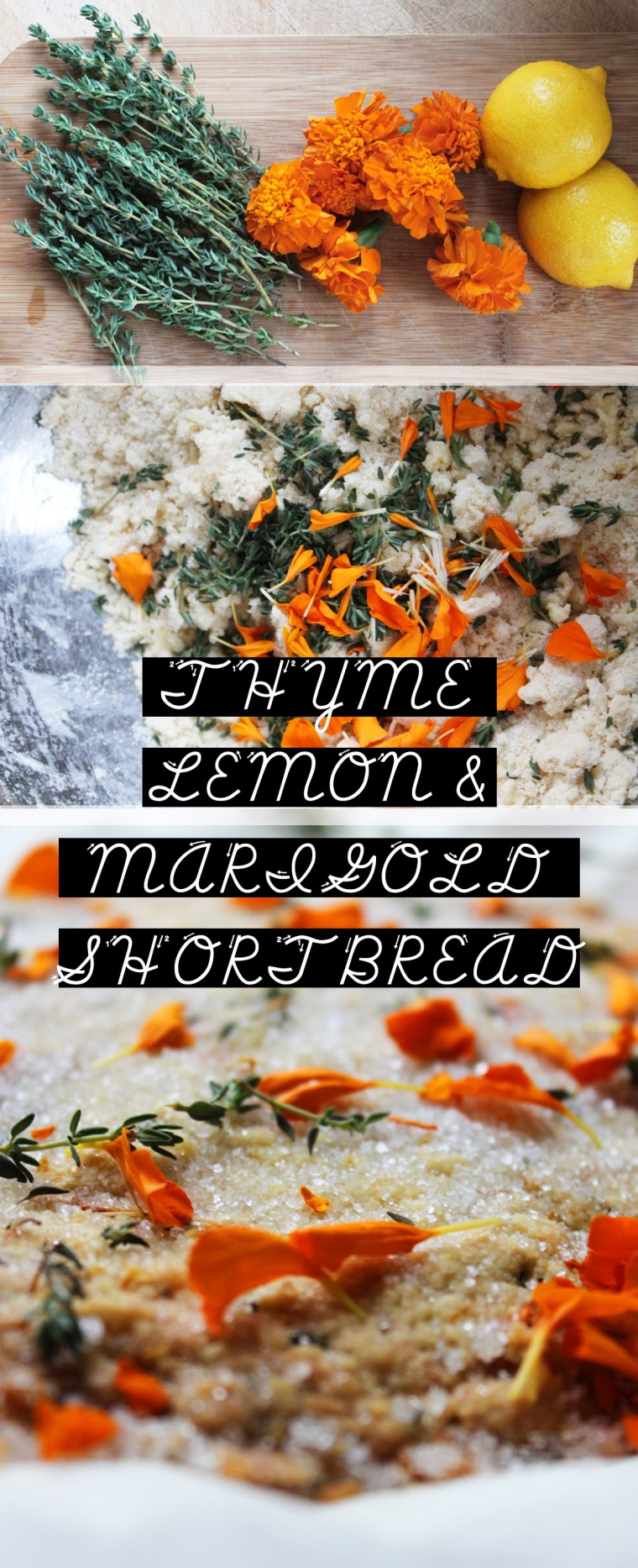 THYME LEMON AND MARIGOLD SHORTBREAD