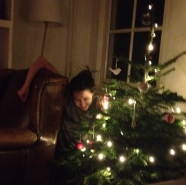 Emily's Christmas tree and Ali who dove behind it to plug it in at 3am.